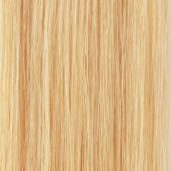 she by SO.CAP. Clip-on-Weft #20 = #613 (very light ultra blonde)